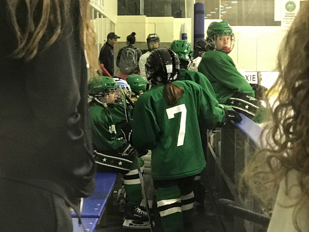 Dallas Stars Elite Girls Prospect Camp – 2017
